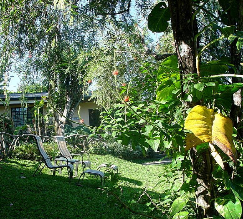 Outside the Toucan Casita, garden of the Pura Vida
